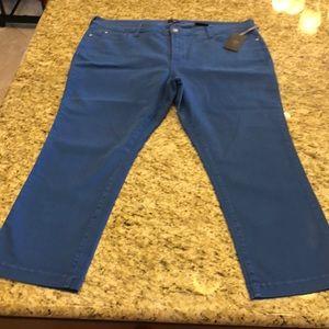 Pants - New plus size 20W ankle pants blue
